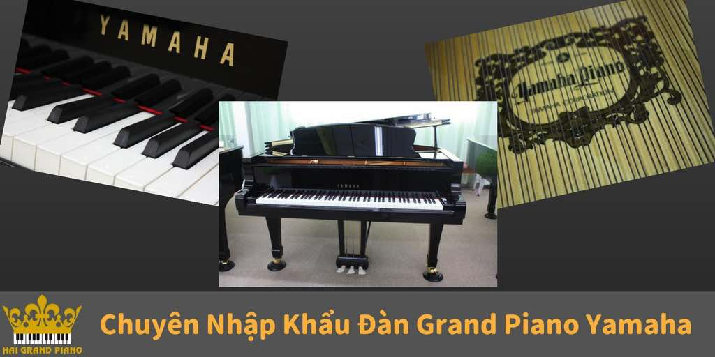 grand-pian-yamaha-hai-grand