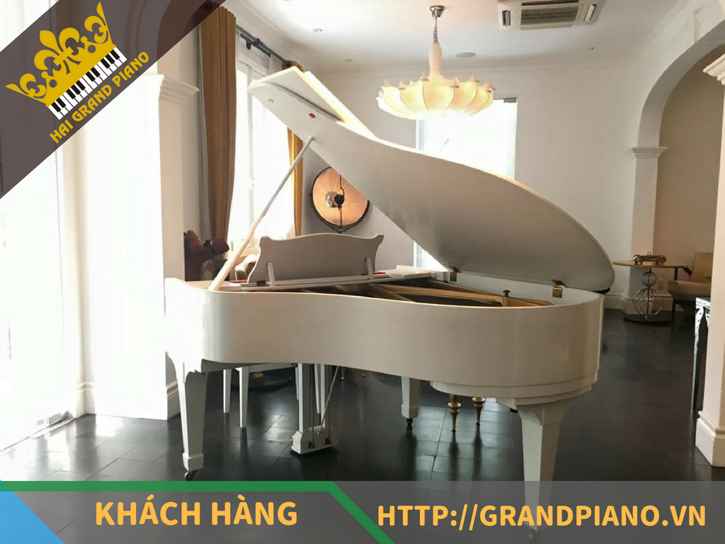 Lý Club - Đàn Grand Piano Kawai No.500
