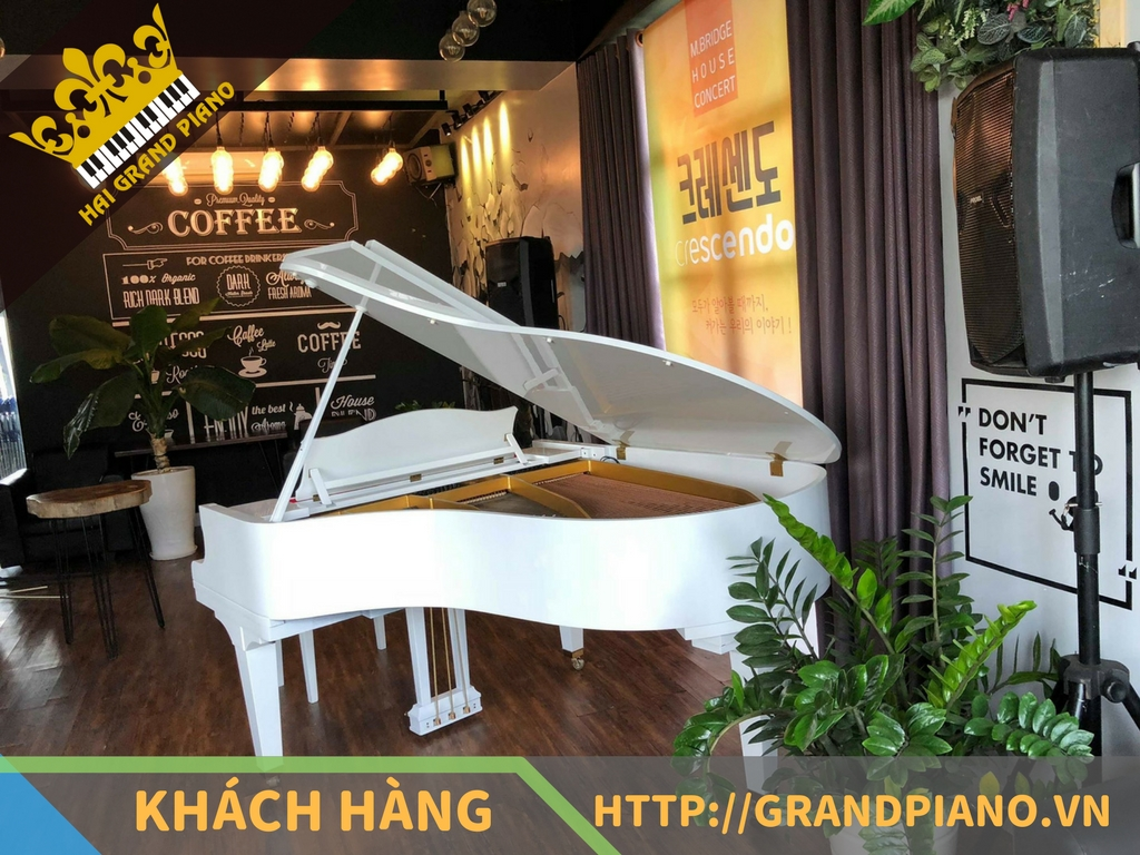 Time Coffee - Đàn Grand Piano Kawai KG-3